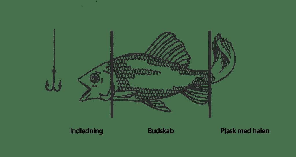 Fortællinger med fiskemodellen